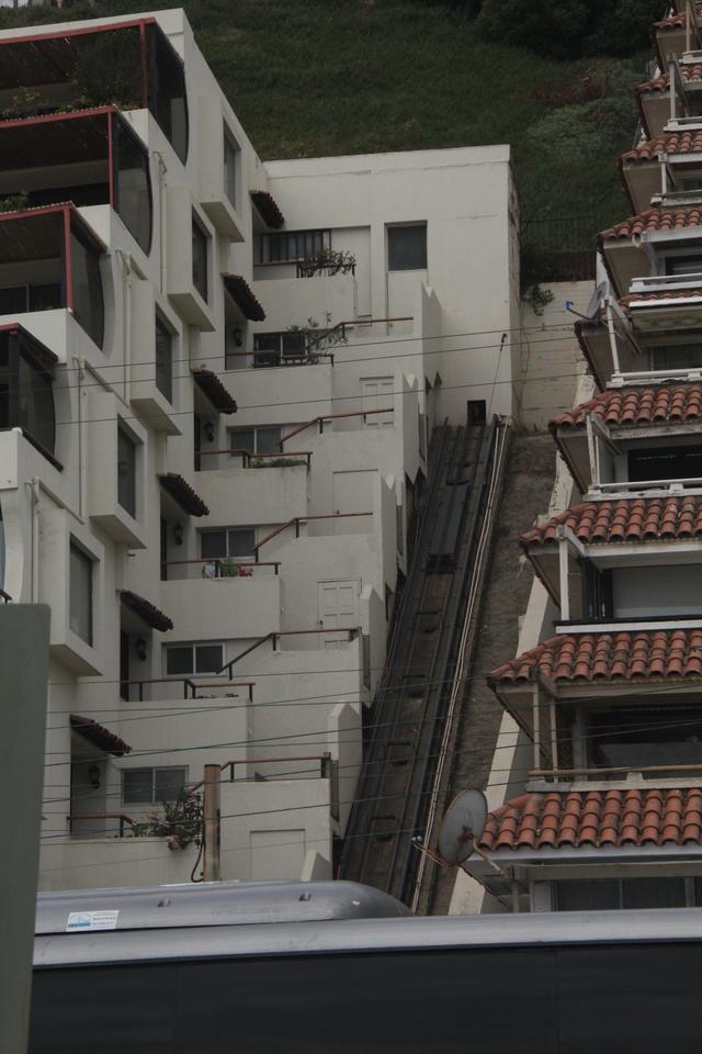 秋叶霜天:蜻蜓点水游智利 - 菁英草原 - 菁英草原