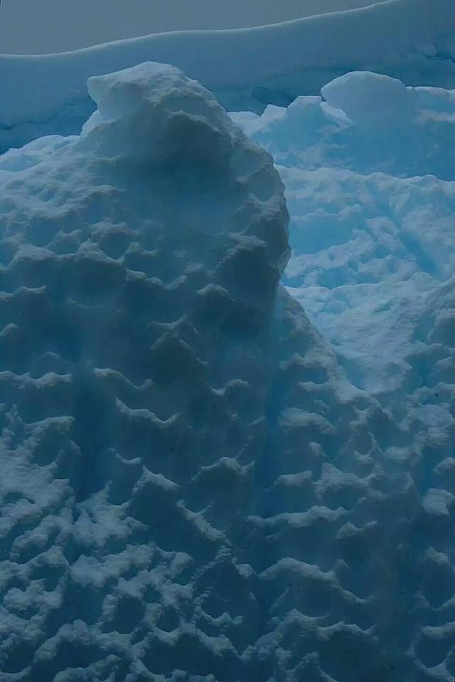 秋叶霜天:世界第七级——南极游(二) - 菁英草原 - 菁英草原