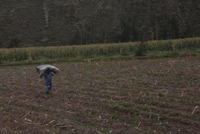 秋叶霜天:世界七大奇迹~~被人们遗忘的城市 - 菁英草原 - 菁英草原