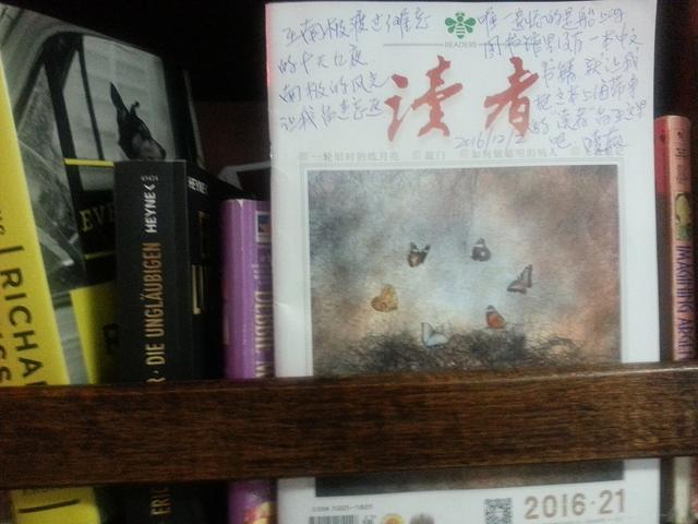 秋叶霜天:世界第七级——南极游(五) - 菁英草原 - 菁英草原