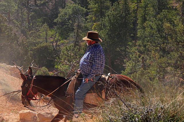 秋叶霜天:壮美!荒漠中的美国西部国家公园群(二) - 菁英草原 - 菁英草原